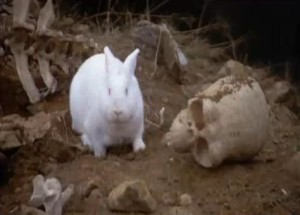 The Greeks could have considered bunnies fierce animals.